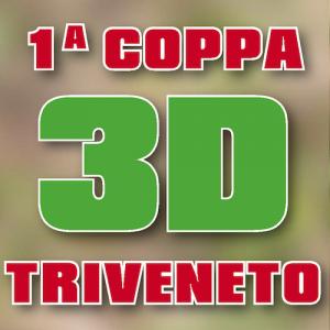 1A COPPA 3D TRIVENETO